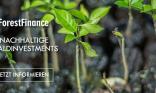 Forestfinance_Slider